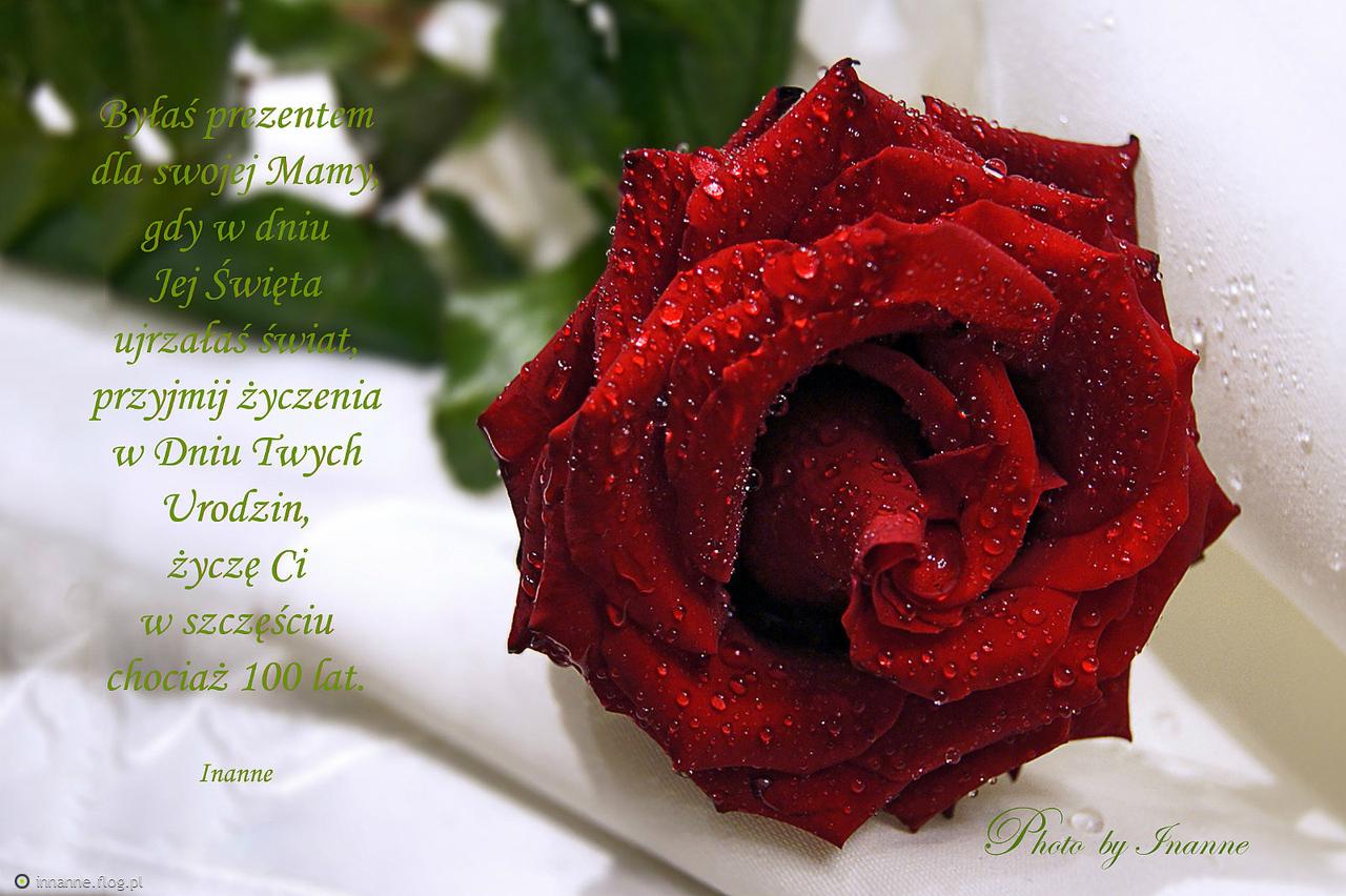 Jutro Twoje Urodzinydla Ciebie Karolko Wszystkiego