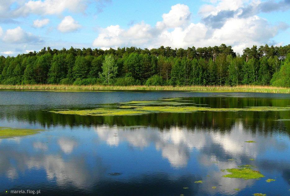 Jezioro Czyste...