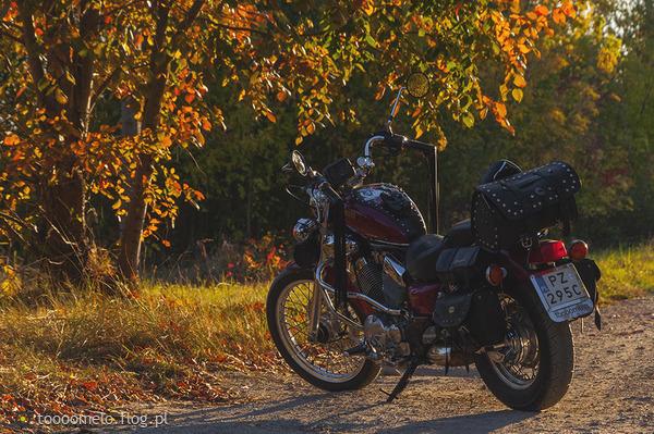 http://s10.flog.pl/media/foto_middle/10514719_jesien-jedzie-przez-park-na-motocyklu.jpg