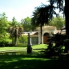 Dla  Zygmunta  w  podzięk<br />owaniu  za  miłą  dedykac<br />ję - Królewski  Ogród  Bo<br />taniczny  w  Madrycie.
