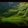413. Grasz w zielone? :: Garść norweskich zielonyc<br />h obrazków, bo przecież m<br />usi być wiosennie.    Bra<br />kuje mi zielonego. T