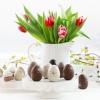 Wesołego Alleluja ! :: Z okazji Świąt Wielkiej N<br />ocy  pragniemy Wam złożyć<br /> najserdeczniejsze życzen<br />ia: zdrowia, radoś